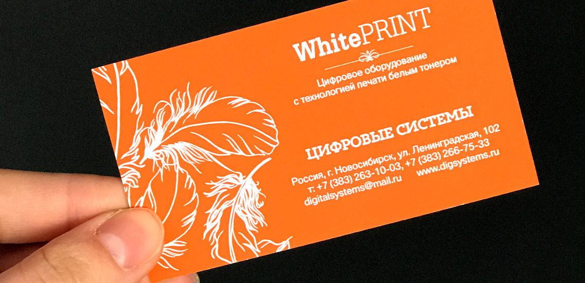 Визитка Whiteprint